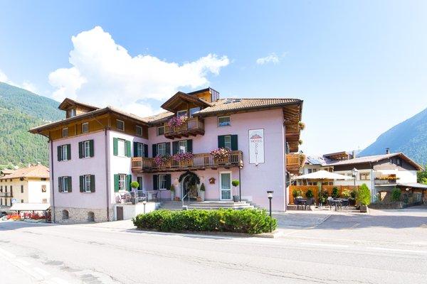 Photo exteriors in summer Alphotel Dolomiti