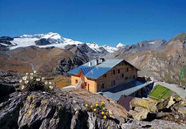 Sommer Präsentationsbild Marteller Hütte