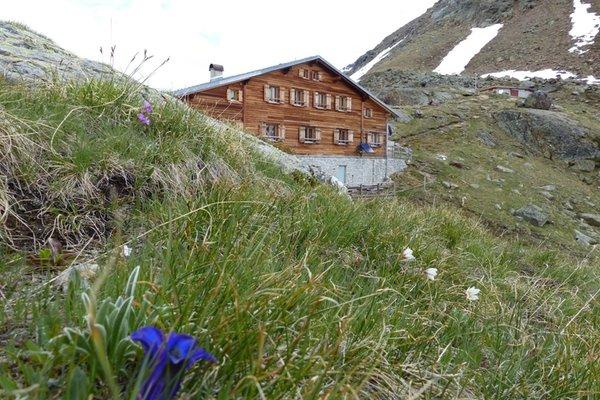Foto Außenansicht im Sommer Marteller Hütte