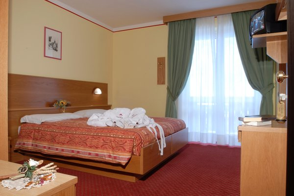 Photo of the room Hotel Michela