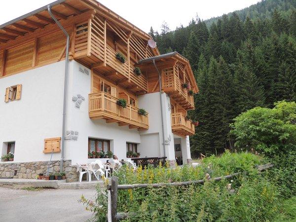Foto esterno in estate Al Fontanin