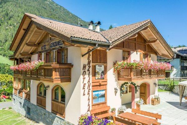 Foto estiva di presentazione Hotel Genzianella