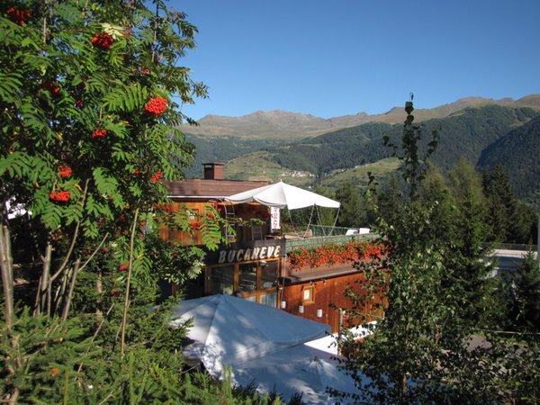 Foto esterno in estate Bucaneve