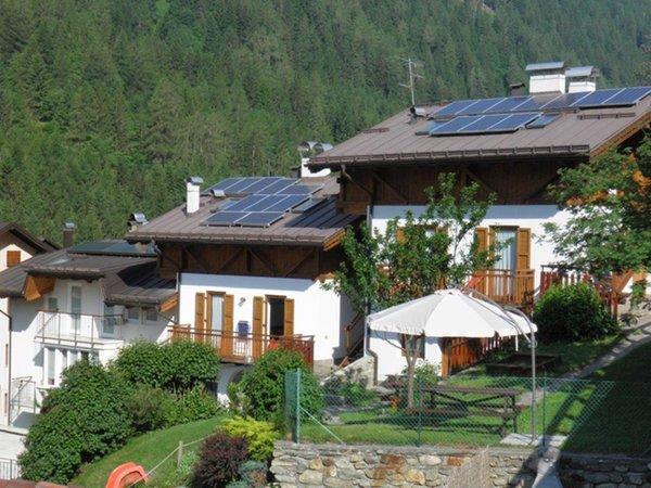 Foto esterno in estate Arnica