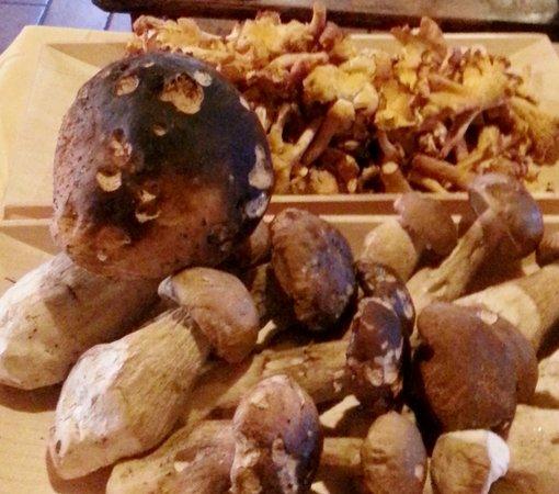 Ricette e proposte gourmet Belotti