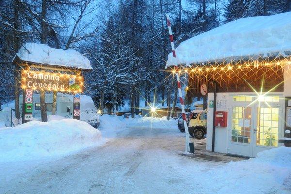 Foto invernale di presentazione Cevedale - Campeggio