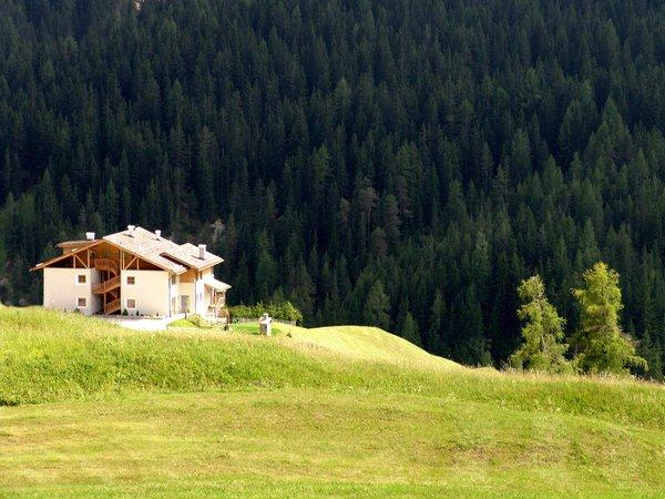 Foto esterno in estate Serghela
