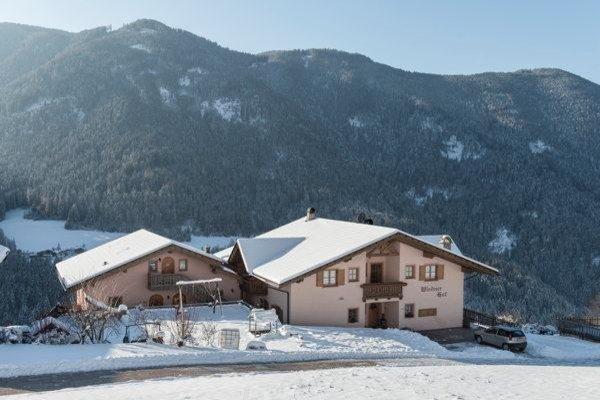 Foto invernale di presentazione Wiednerhof - Appartamenti in agriturismo 3 fiori