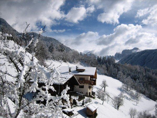 Foto esterno in inverno Spinuserhof