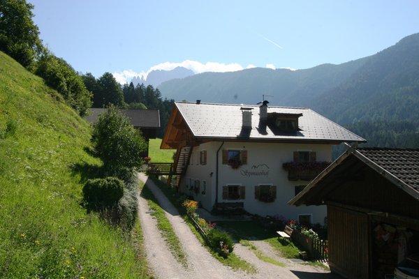 Foto esterno in estate Spinuserhof