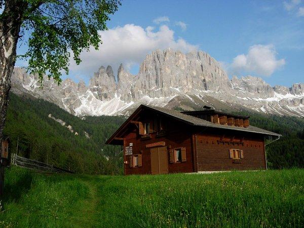 Foto estiva di presentazione Plafötsch - Baita