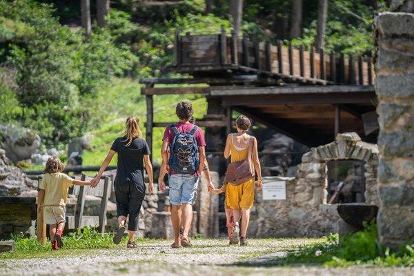 Attività estate Val di Sole e Val Rendena