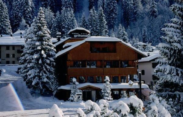 Winter presentation photo Grifone - Hotel 4 stars