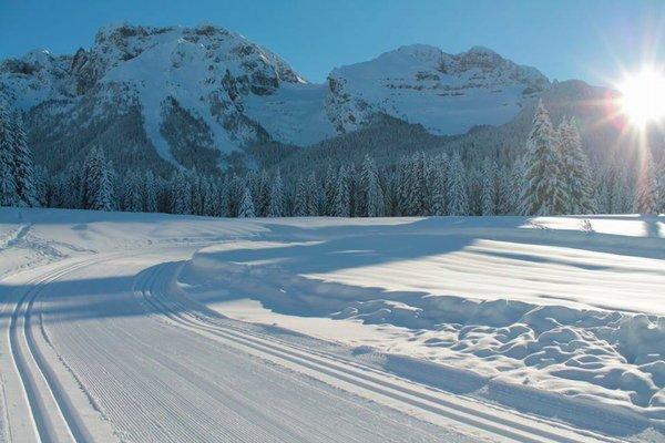 Presentation Photo Italian Cross Country Ski School Malghette