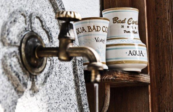 Foto di alcuni dettagli Aqua Bad Cortina – nature cuisine