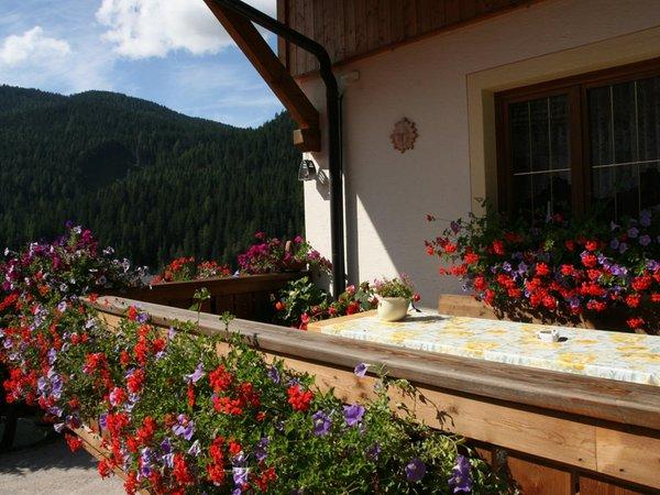 Foto del balcone Ciasa Odlana