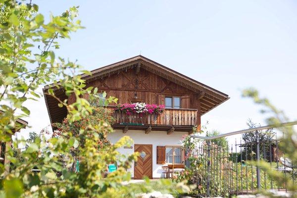 Foto esterno in estate Pineta Hotels Nature Wellness Resort