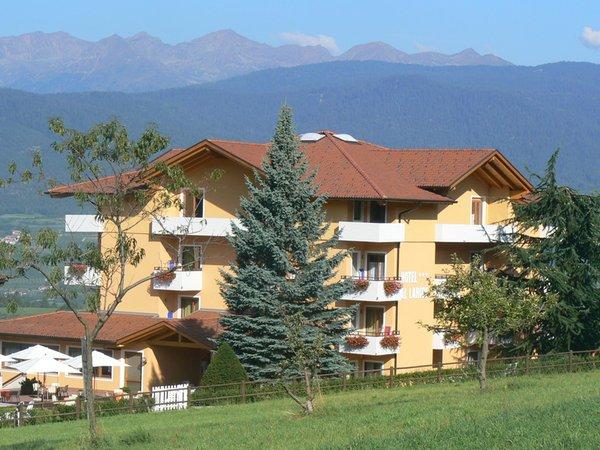 Foto esterno in estate Hotel Al Larice