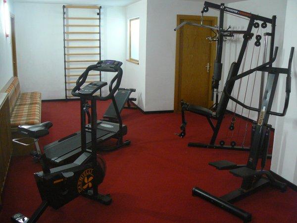 Foto della zona fitness Hotel Al Larice