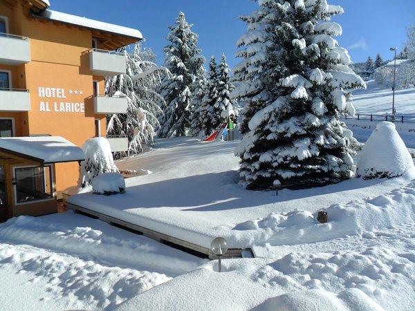 Foto esterno in inverno Hotel Al Larice