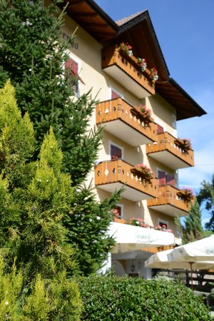Foto esterno in estate Aurora - Alpin Gourmet