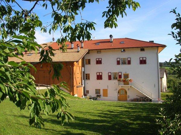 Foto estiva di presentazione Maso San Bartolomeo - Camere + Appartamenti in agriturismo 5 fiori