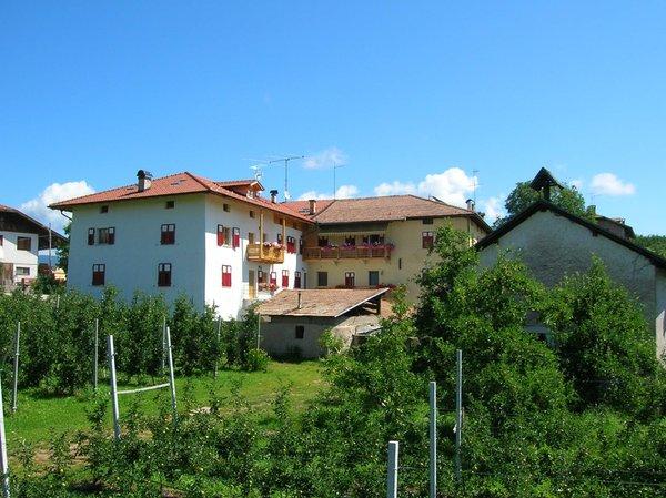 Foto esterno in estate Maso San Bartolomeo