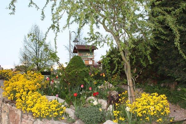 Foto del giardino Smarano (Val di Non)