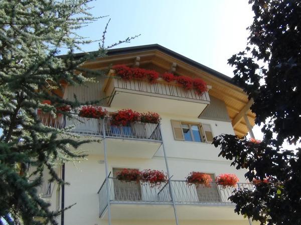 Foto estiva di presentazione Cristina - Camere + Appartamenti in agriturismo 4 fiori