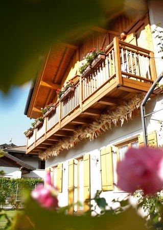 Foto esterno in estate Renetta