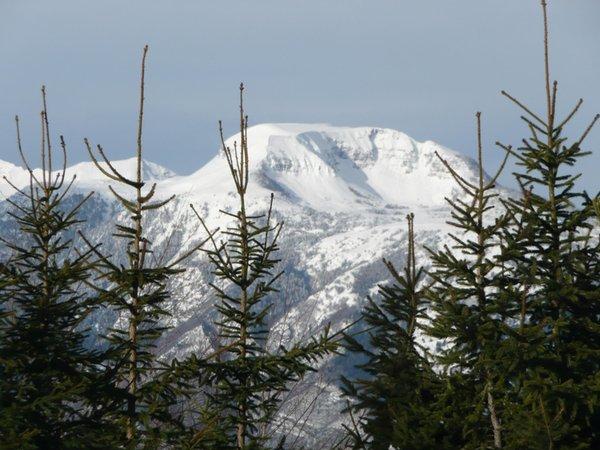 Panoramic view Sfruz (Val di Non)