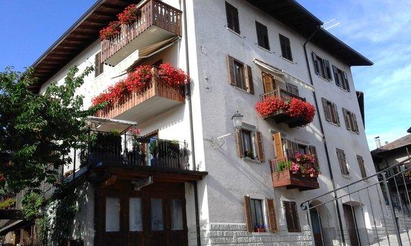 Foto estiva di presentazione Brentari Cornelio - Appartamenti 2 genziane