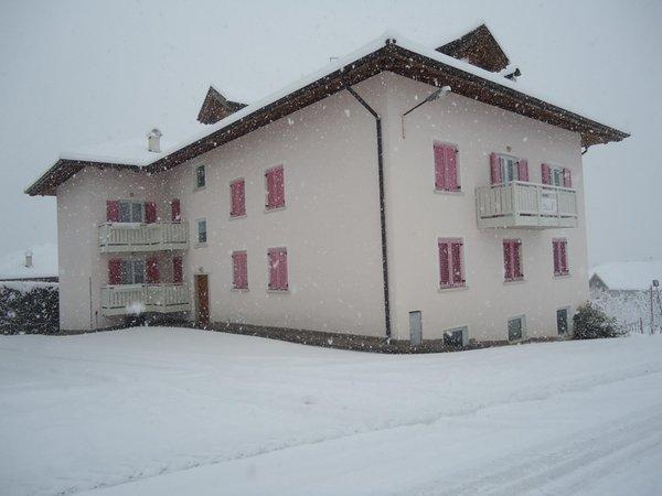 Foto esterno in inverno Casa Vacanze Rosa