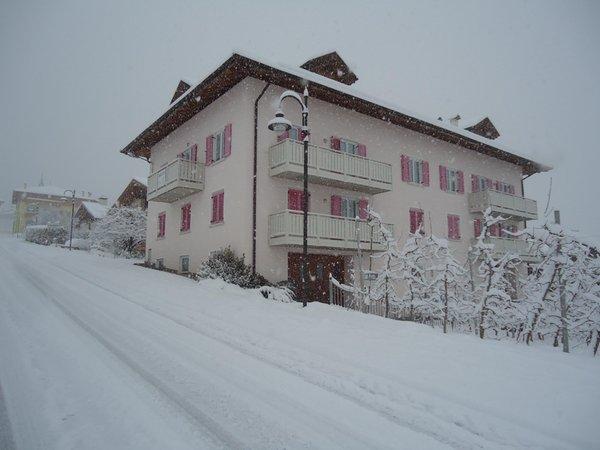 Foto invernale di presentazione Casa Vacanze Rosa - Appartamenti 3 genziane