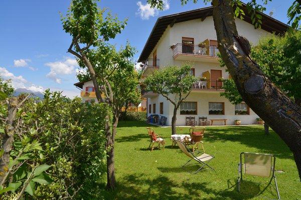 Foto esterno in estate Piccolo Hotel Bruno