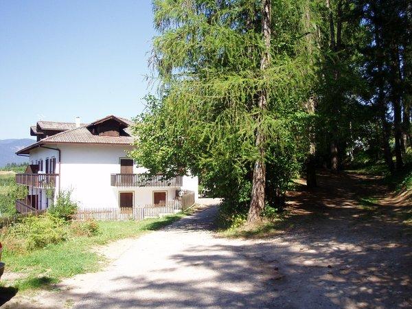 Foto esterno in estate Leonardelli Pio