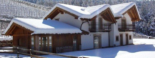 Foto invernale di presentazione Alpenvidehof - Appartamenti in agriturismo 2 fiori