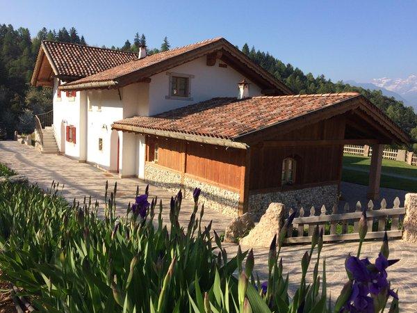 Foto esterno in estate Alpenvidehof