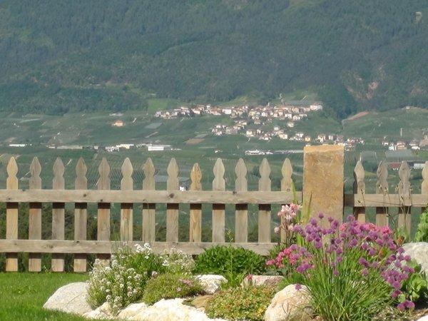 Foto del giardino Coredo (Taio - Predaia)