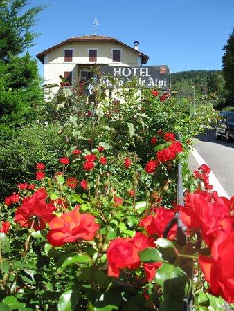 Foto esterno in estate Stella delle Alpi Wellness & Resort