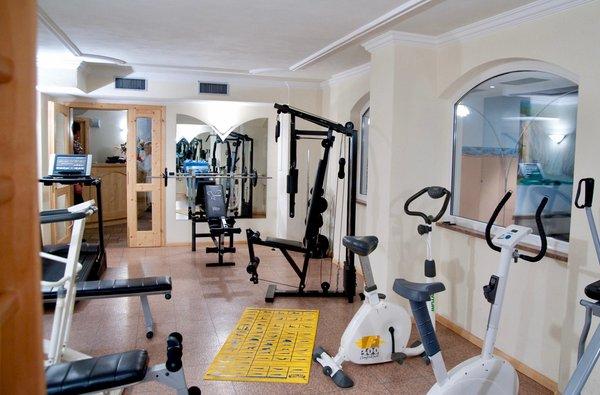 Foto della zona fitness Hotel Waldheim Resort & Spa