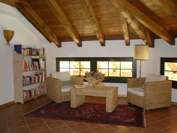 The common areas Guest house La Capannina