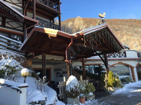 Foto esterno in inverno Scoiattolo