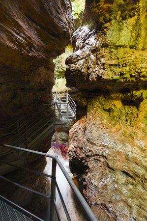 Foto di presentazione Canyon Rio Sass - null
