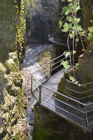 Canyon Rio Sass - null  Fondo (Fondo - Mendola)