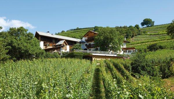 Summer presentation photo Winery Strasserhof