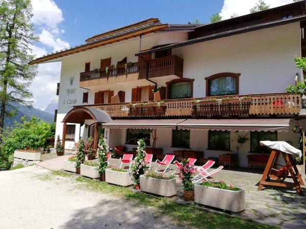 Sommer Präsentationsbild Hotel Il Cardo