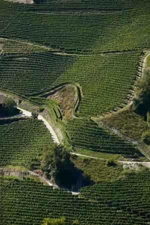 La posizione Cantina Valle Isarco Chiusa