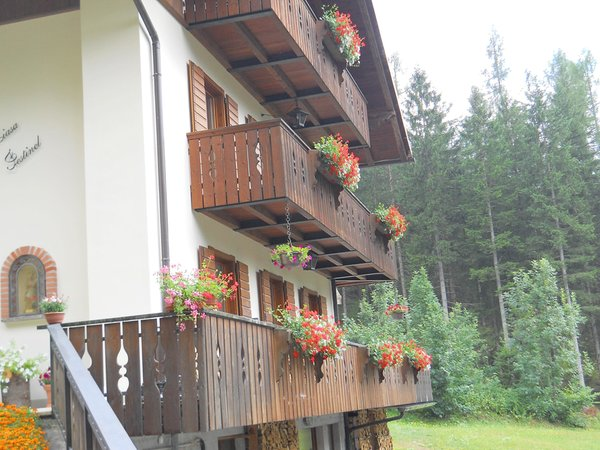 Foto esterno in estate Ciasa Festinel