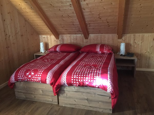 Photo of the room Hotel Tarvisio